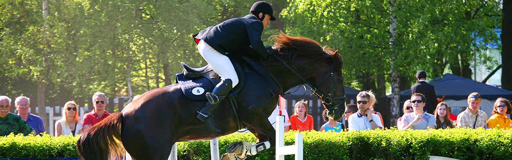 Pretekár musí na koni zdolať parkúr o 12 skokoch, 15 prekážkach. Koňa poskytuje organizátor súťaže a pretekári si kone losujú. Na zoznámenie s koňom na opracovisku majú 20 minút.